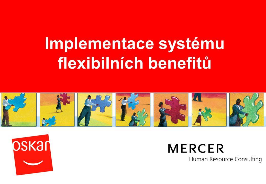 Implementace systému flexibilních benefitů