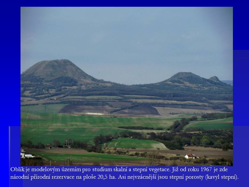 Oblík je modelovým územím pro studium skalní a stepní vegetace.