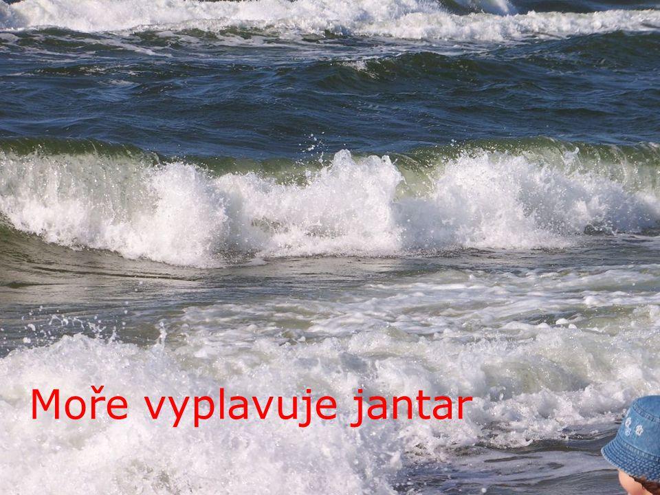 Moře vyplavuje jantar