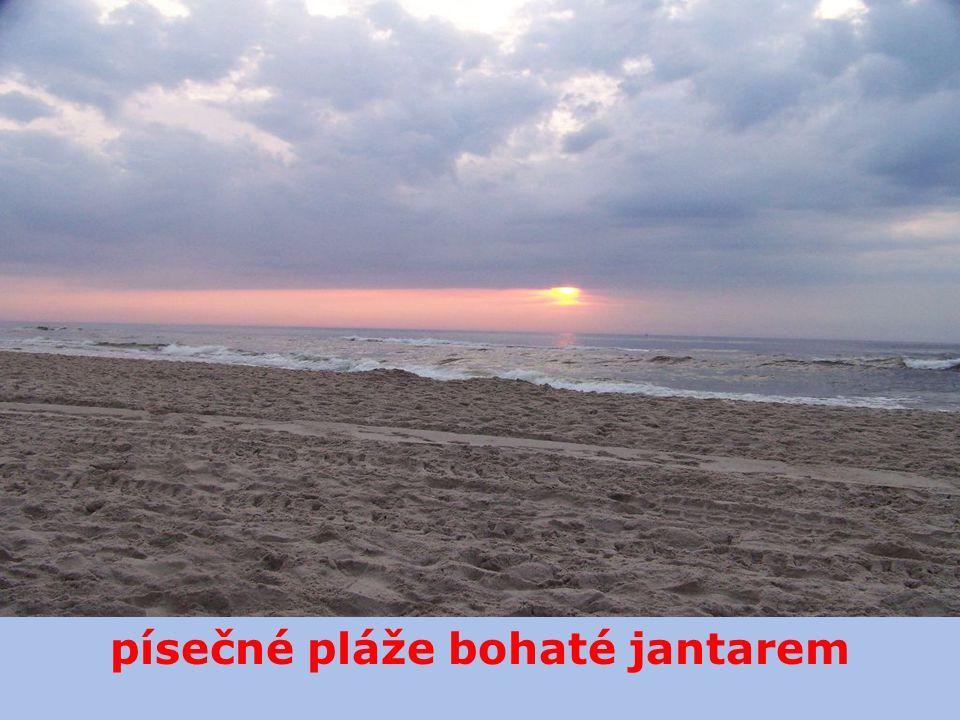písečné pláže bohaté jantarem