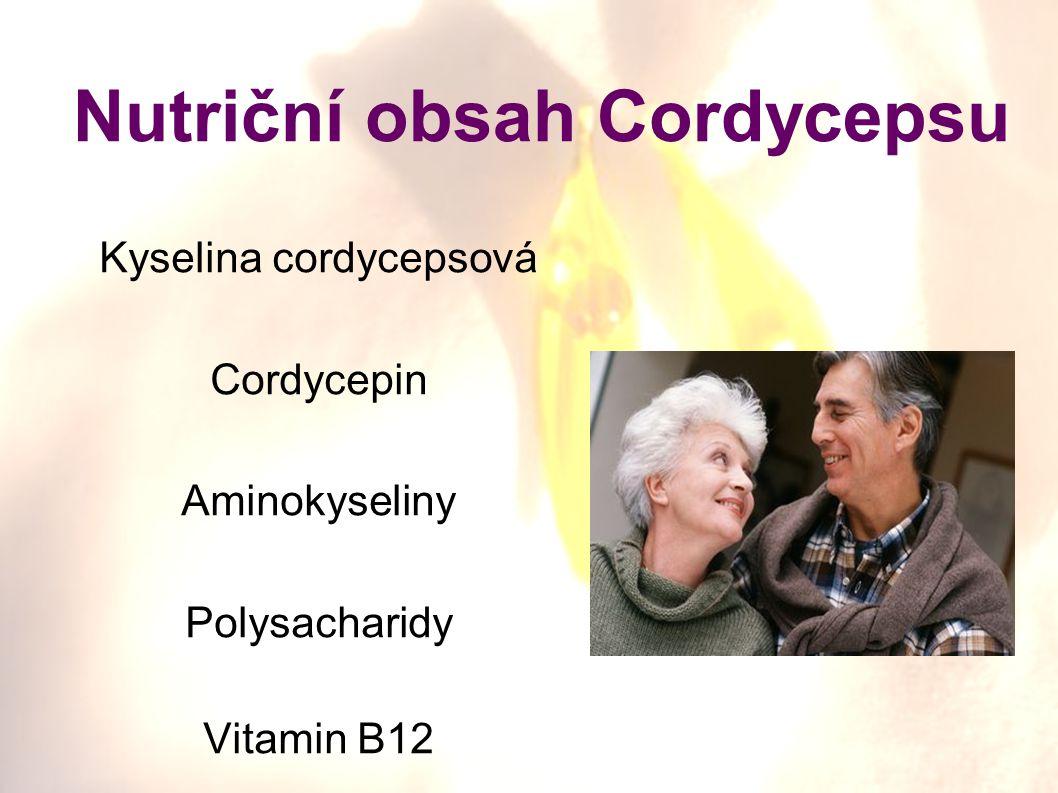 Nutriční obsah Cordycepsu Kyselina cordycepsová Cordycepin Aminokyseliny Polysacharidy Vitamin B12