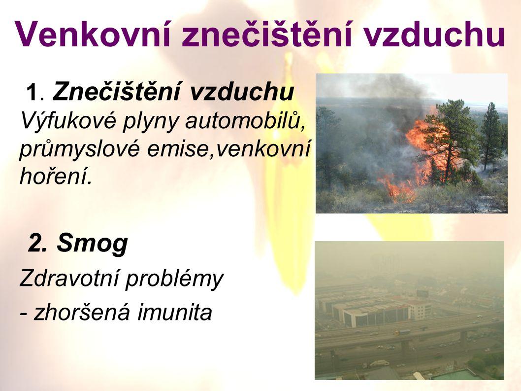 Venkovní znečištění vzduchu 1. Znečištění vzduchu Výfukové plyny automobilů, průmyslové emise,venkovní hoření. 2. Smog Zdravotní problémy - zhoršená i