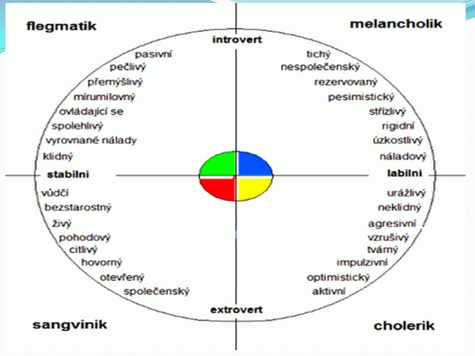 SANGVINIK stabilní extrovert, psychicky vyrovnaný, společenský, živý, optimistický, přizpůsobivý, rychlý, vnímavý, bezstarostný, lehkomyslný, nestálý, netrpělivý, nesoustředěný, hovorný, přístupný, činorodý, veselý, nenucený, čilý, optimista, názorově a emočně je však nestálý, prožívá povrchně a krátce, bývá schopným podřízeným pouští se do mnoha věcí, které pak nemůže dotáhnout do konce, nedokáže pochopit, že může mít nějaké zásadní povahové vady, příliš mluví, je rozvláčný a často a rád přehání, na termíny u práce si příliš nepotrpí, střídá často zaměstnání má rád společnost, je citový a okázalý, dokáže vše přeměnit v legraci, nachází v životě spoustu vzrušení a dokáže své zážitky zajímavě a pestře vyprávět, je vždy vstřícný a optimistický, již od dětství bývá zvědavý a veselý, dokáže si hrát se vším, co je při ruce, miluje přítomnost ostatních, nemusí mít více talentu než ostatní, ale zřejmě si užívá více zábavy a legrace jeho charisma a překypující osobnost k němu neustále přitahuje lidi, zatímco ostatní povahy pouze mluví, sangvinik vypráví příběhy, rád je středem pozornosti a díky svému vypravěčskému talentu je duší společnosti, dobře si pamatuje barvy, na rozdíl například od jmen a jiných faktů, je pro něj přirozený fyzický kontakt s ostatními lidmi, doteky, objetí, hlazení má vrozený smysl pro dramatičnost a může být vynikajícím hercem, má naivní povahu a i v dospělosti si zachovává dětskou prostotu, je citový, otevřený a bezprostřední, překypuje optimismem a nadšením téměř nad vším, odjakživa chce vše vědět a tajemství u něho vyvolává šílenství bez váhání umí nabídnout svou pomoc, příliš však nedomýšlí důsledky své ochoty, je tvůrčí a neustále tvoří nové a nové vzrušující nápady, inspiruje a přitahuje ostatní svou vlastní energií a nadšením, umí začít hovor s každým, kdo je poblíž a hned se stane vaším přítelem