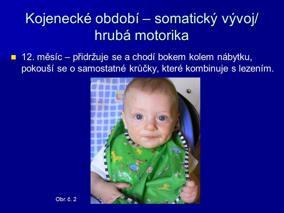 Kojenecké období – somatický vývoj/ hrubá motorika 12.