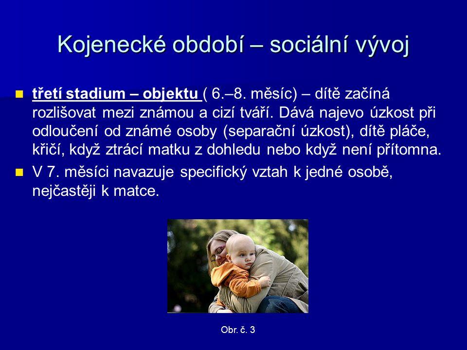 Kojenecké období – sociální vývoj třetí stadium – objektu ( 6.–8.