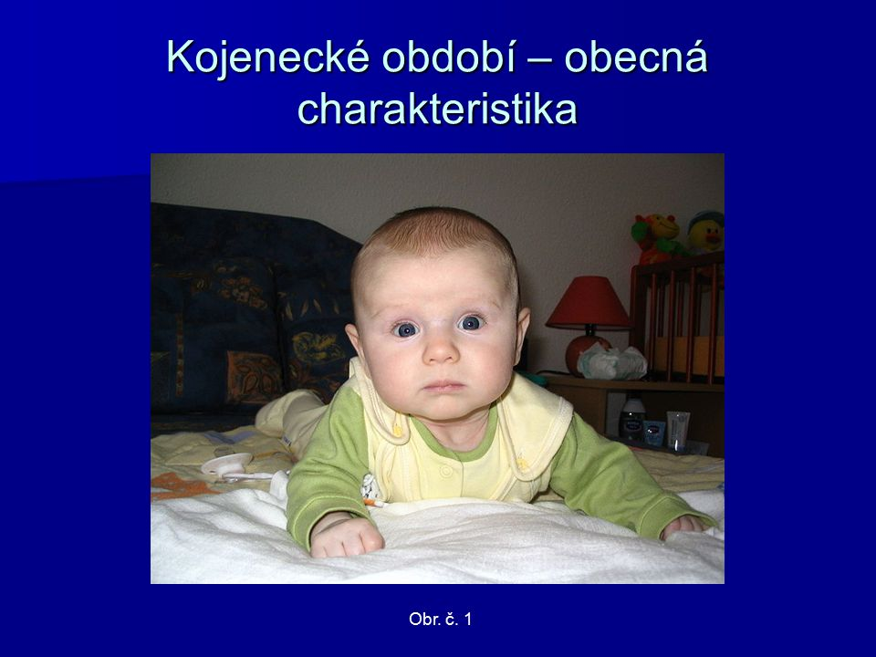 Kojenecké období – obecná charakteristika Obr. č. 1