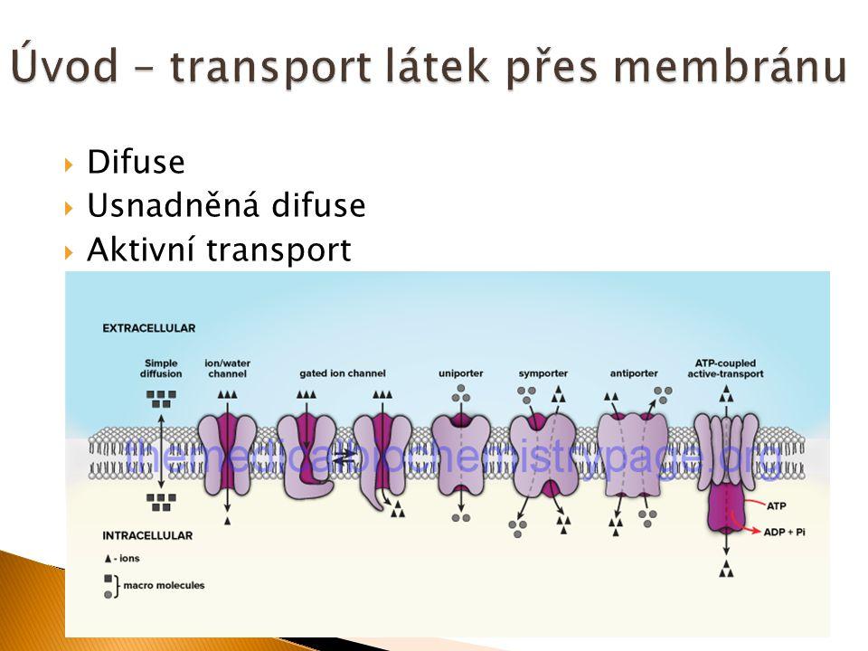 Difuse  Usnadněná difuse  Aktivní transport