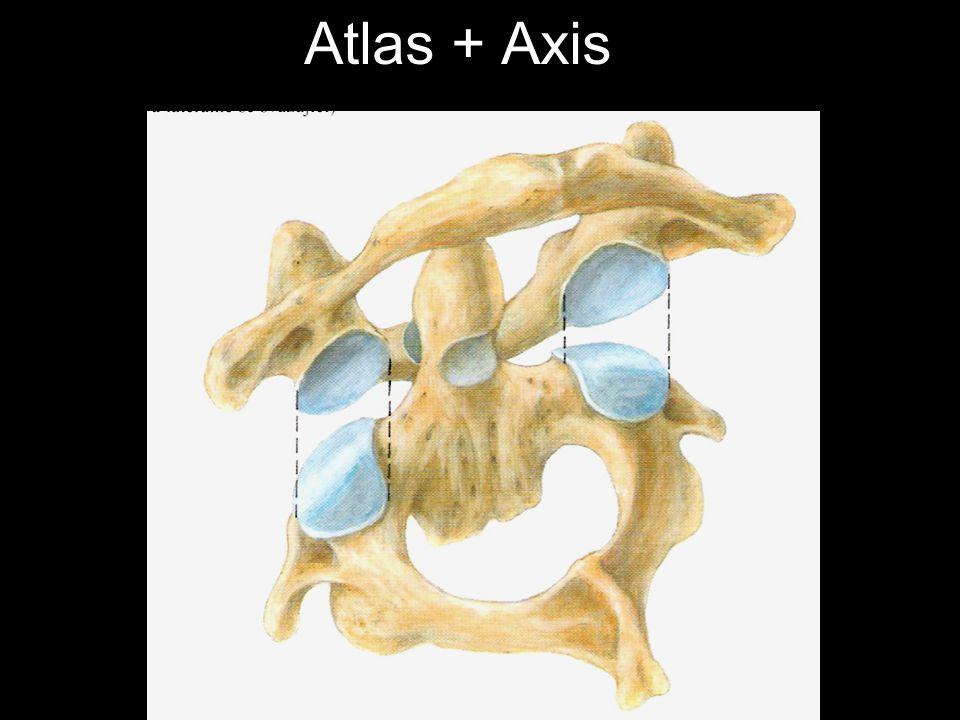 Atlas + Axis