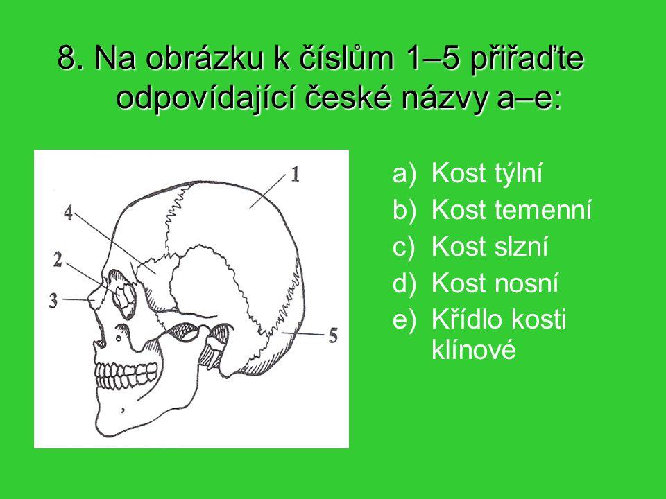 19. Mezi mimické svaly nepatří: Zevní sval žvýkací Kruhový sval oční Sval tvářový Sval lícní