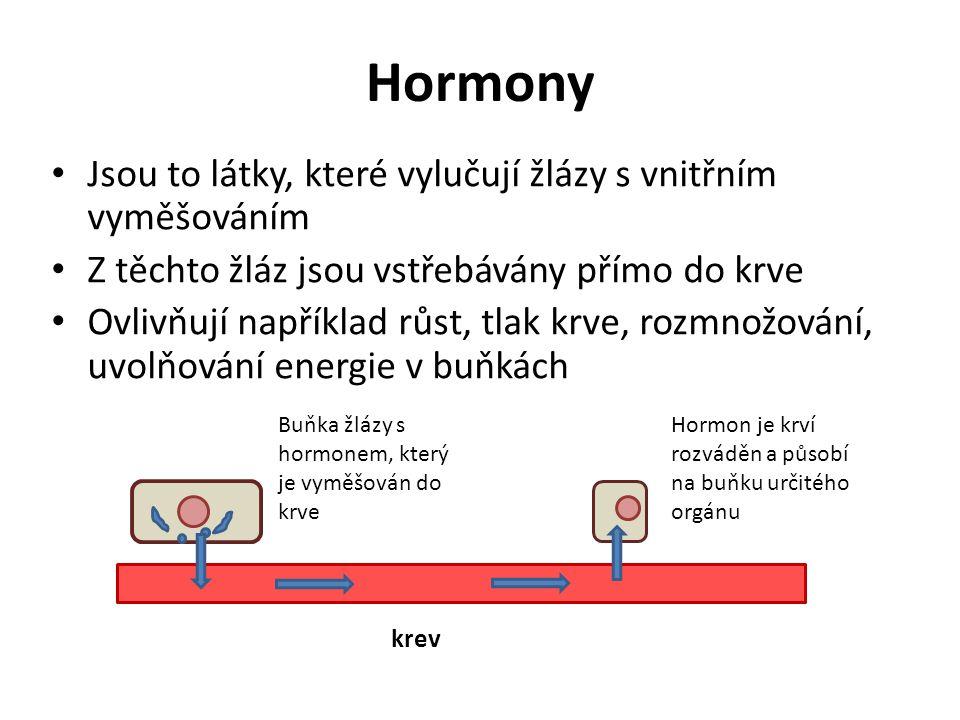 Hormony Jsou to látky, které vylučují žlázy s vnitřním vyměšováním Z těchto žláz jsou vstřebávány přímo do krve Ovlivňují například růst, tlak krve, rozmnožování, uvolňování energie v buňkách krev Buňka žlázy s hormonem, který je vyměšován do krve Hormon je krví rozváděn a působí na buňku určitého orgánu