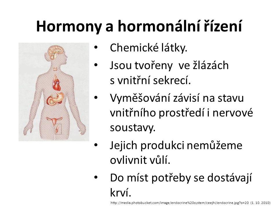 Hormony a hormonální řízení http://media.photobucket.com/image/endocrine%20system/ceejhi/endocrine.jpg?o=20 (1.