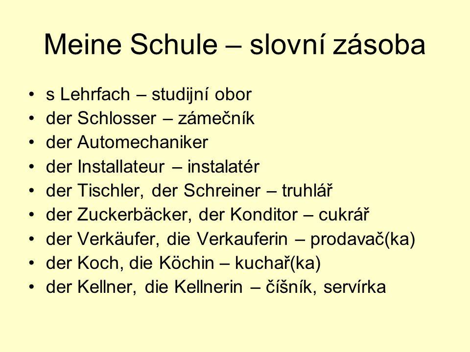 Meine Schule – slovní zásoba s Lehrfach – studijní obor der Schlosser – zámečník der Automechaniker der Installateur – instalatér der Tischler, der Sc