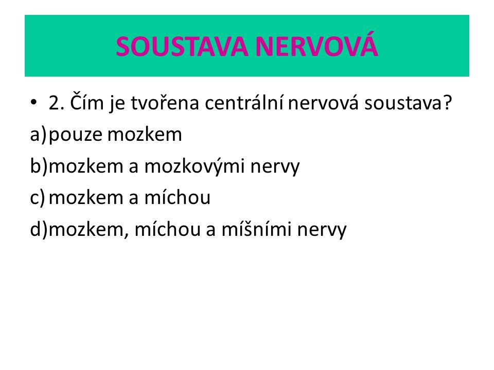 SOUSTAVA NERVOVÁ 2. Čím je tvořena centrální nervová soustava? a)pouze mozkem b)mozkem a mozkovými nervy c)mozkem a míchou d)mozkem, míchou a míšními