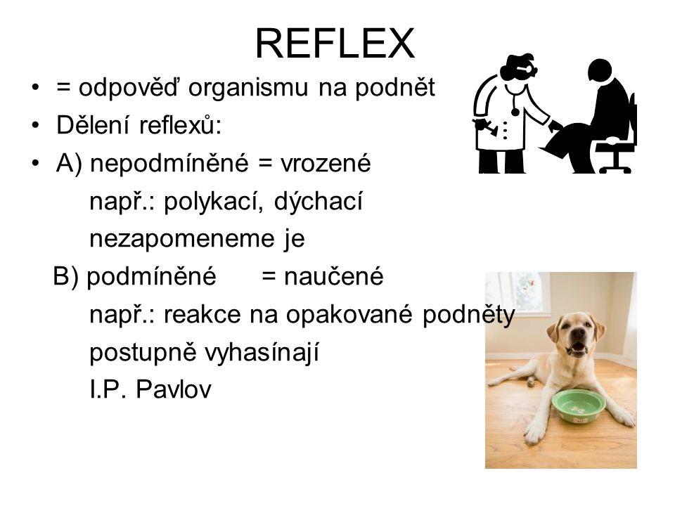 REFLEX = odpověď organismu na podnět Dělení reflexů: A) nepodmíněné = vrozené např.: polykací, dýchací nezapomeneme je B) podmíněné = naučené např.: r