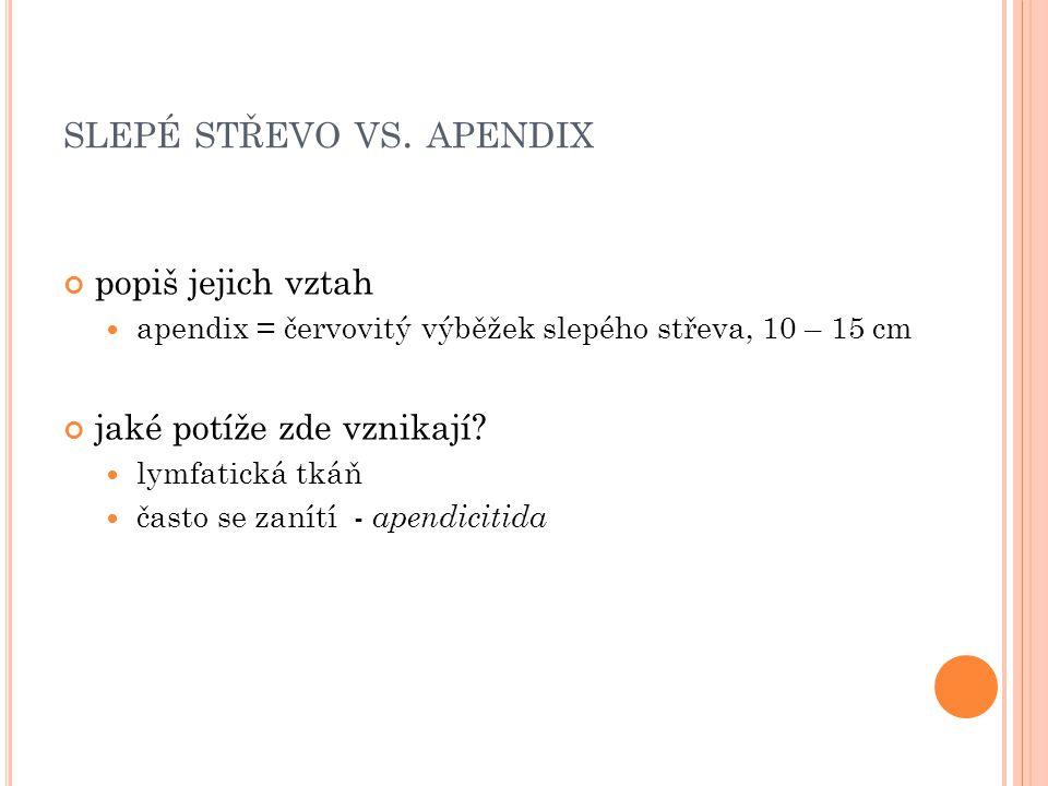 SLEPÉ STŘEVO VS. APENDIX popiš jejich vztah apendix = červovitý výběžek slepého střeva, 10 – 15 cm jaké potíže zde vznikají? lymfatická tkáň často se