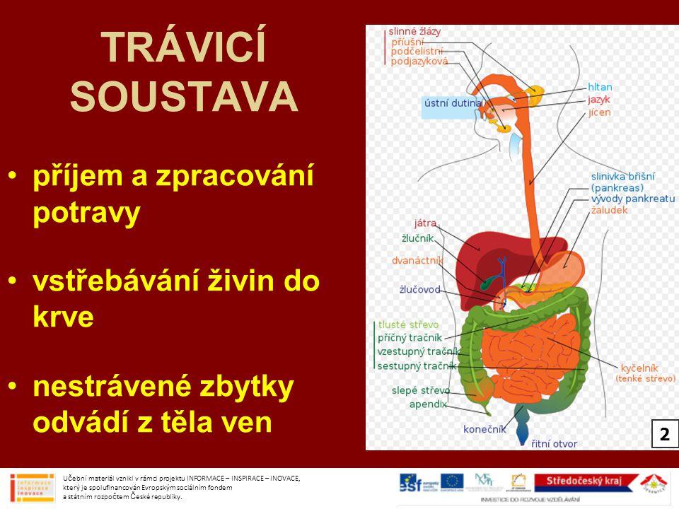 ÚSTNÍ DUTINA zuby –mechanické zpracování potravy Učební materiál vznikl v rámci projektu INFORMACE – INSPIRACE – INOVACE, který je spolufinancován Evropským sociálním fondem a státním rozpočtem České republiky.