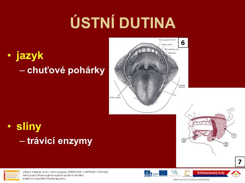 ÚSTNÍ DUTINA jazyk –chuťové pohárky sliny –trávicí enzymy Učební materiál vznikl v rámci projektu INFORMACE – INSPIRACE – INOVACE, který je spolufinan