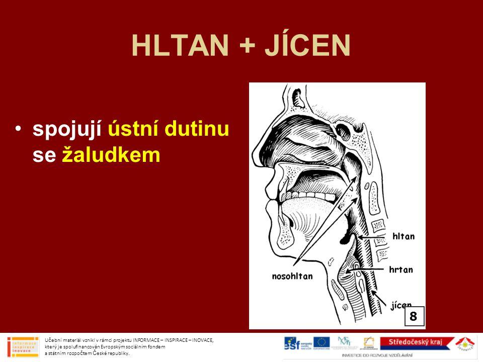 HLTAN + JÍCEN spojují ústní dutinu se žaludkem Učební materiál vznikl v rámci projektu INFORMACE – INSPIRACE – INOVACE, který je spolufinancován Evrop