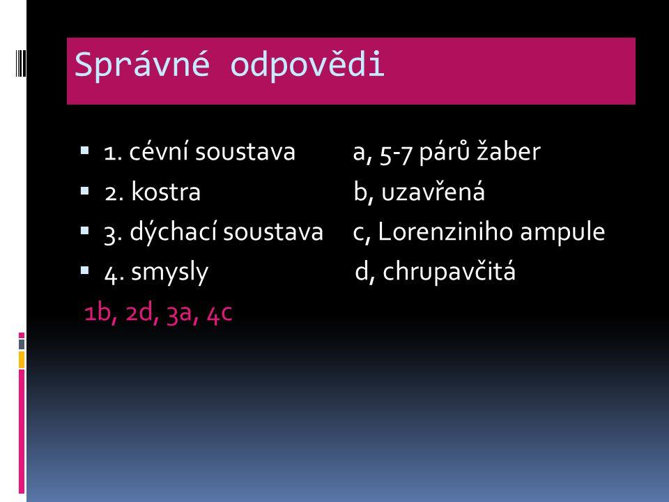 Správné odpovědi  1. cévní soustava a, 5-7 párů žaber  2. kostra b, uzavřená  3. dýchací soustava c, Lorenziniho ampule  4. smysly d, chrupavčitá