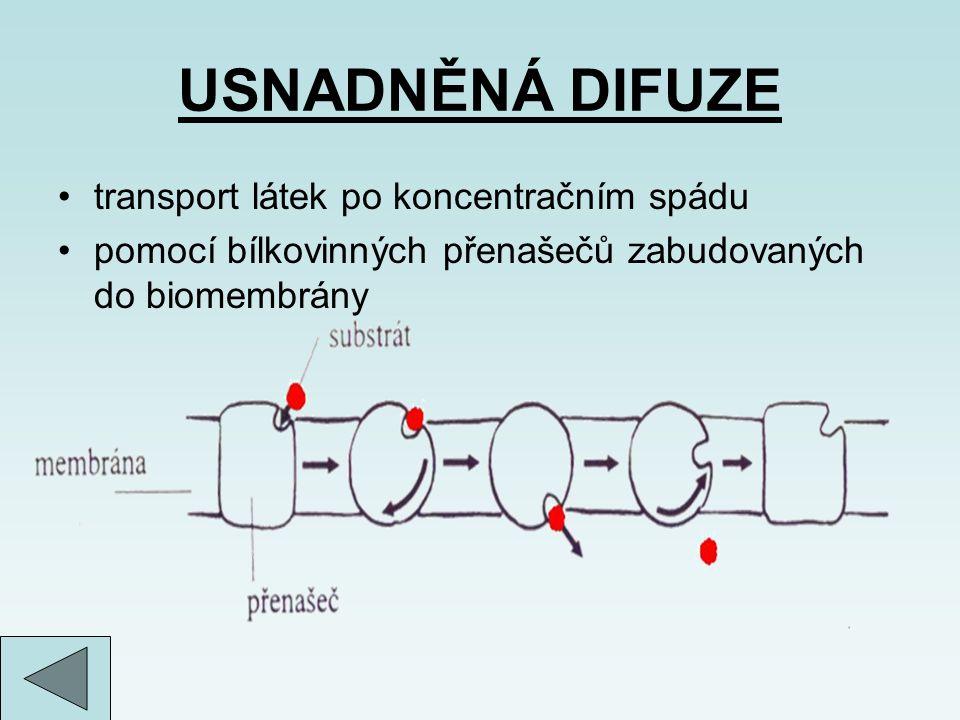 USNADNĚNÁ DIFUZE transport látek po koncentračním spádu pomocí bílkovinných přenašečů zabudovaných do biomembrány