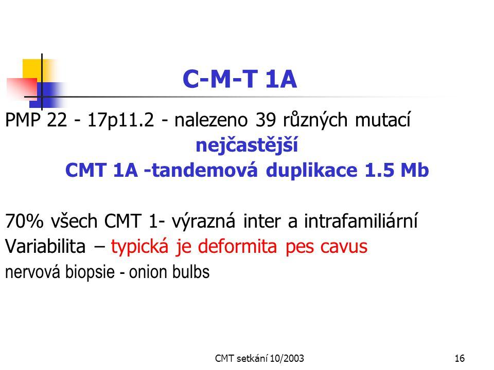 CMT setkání 10/200315 2 základní typy CMT neuropatie CMT I - demyelinizační nejčastější forma 1 : 2 000 ( Evropa a severní Amerika ) CMT II - axonální