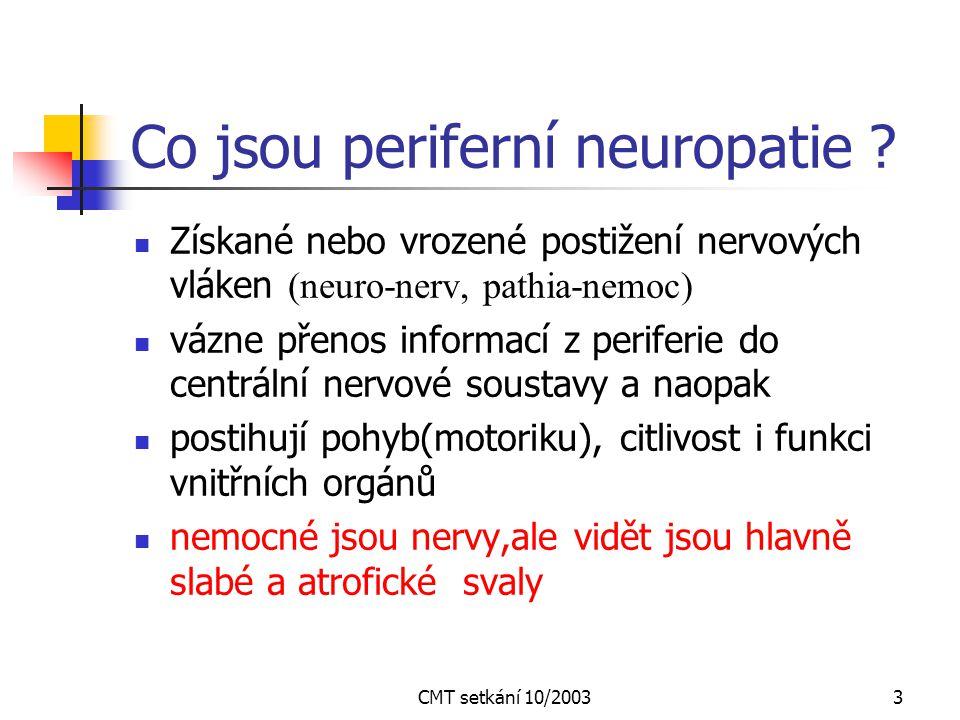 3 Co jsou periferní neuropatie .