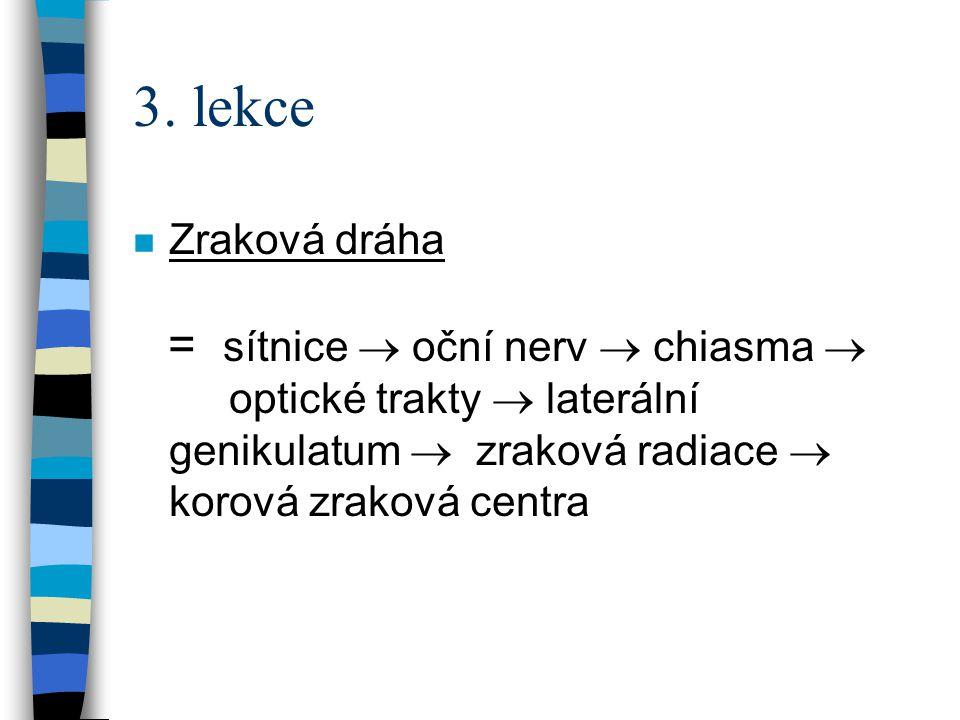 3. lekce n Zraková dráha = sítnice  oční nerv  chiasma  optické trakty  laterální genikulatum  zraková radiace  korová zraková centra
