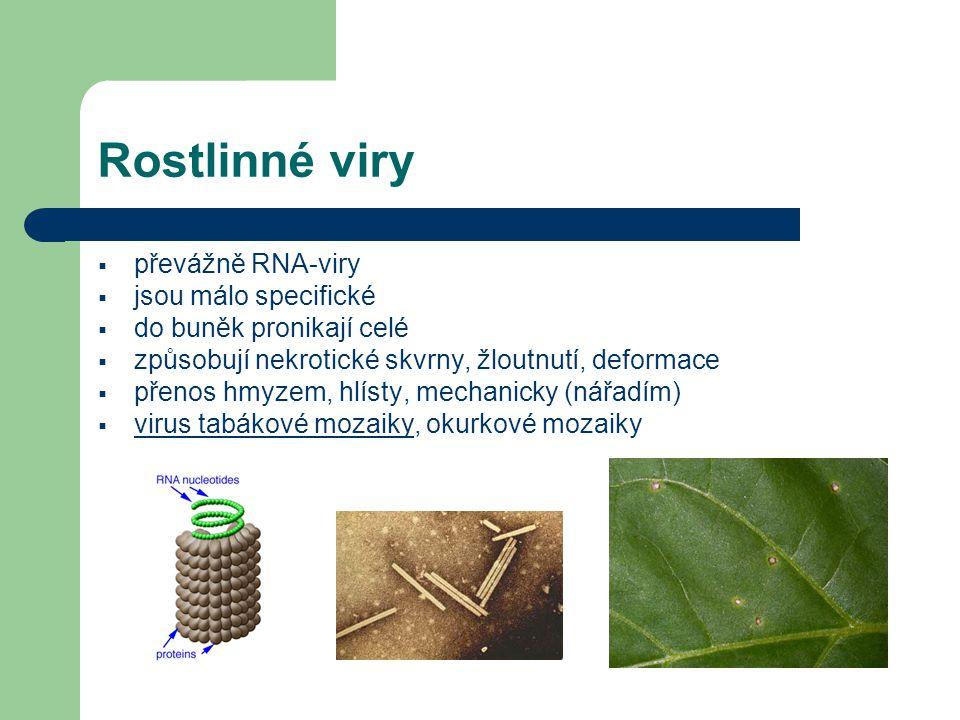 Rostlinné viry  převážně RNA-viry  jsou málo specifické  do buněk pronikají celé  způsobují nekrotické skvrny, žloutnutí, deformace  přenos hmyze