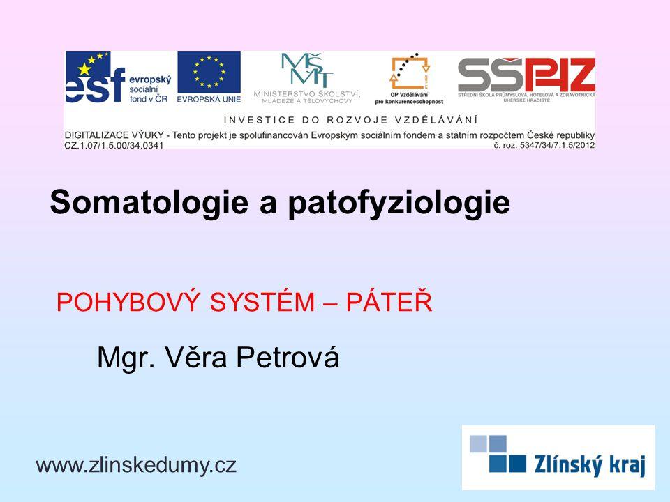 POHYBOVÝ SYSTÉM – PÁTEŘ Mgr. Věra Petrová Somatologie a patofyziologie www.zlinskedumy.cz