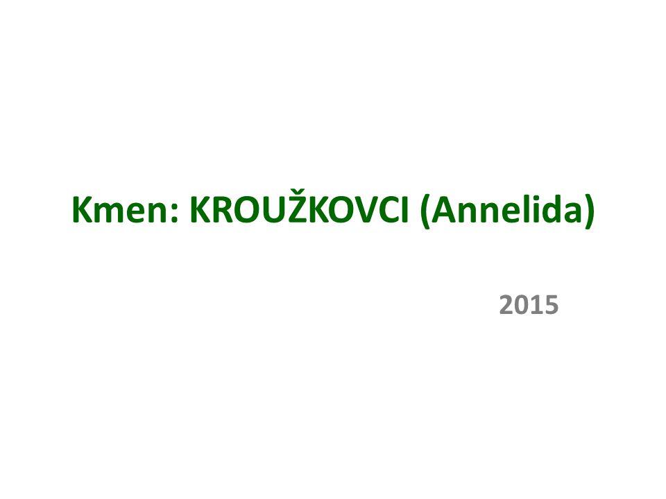 Kmen: KROUŽKOVCI (Annelida) 2015