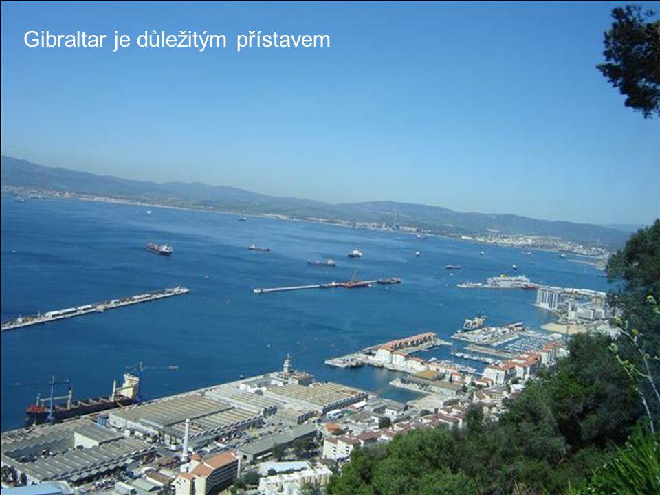 Pohled na město z vrcholu