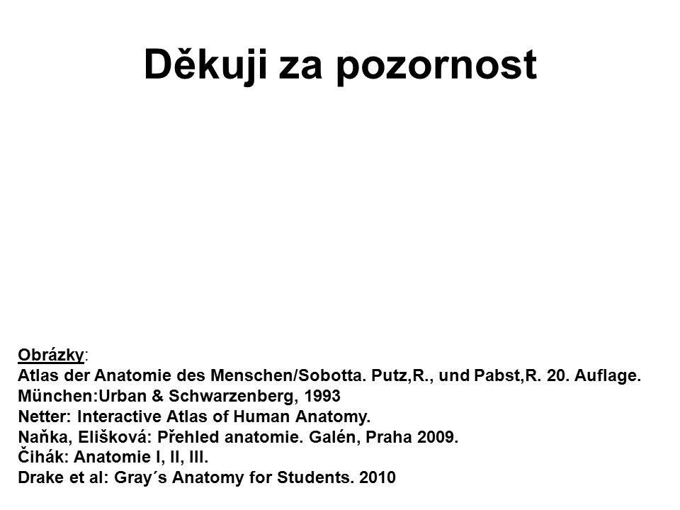 Děkuji za pozornost Obrázky: Atlas der Anatomie des Menschen/Sobotta. Putz,R., und Pabst,R. 20. Auflage. München:Urban & Schwarzenberg, 1993 Netter: I