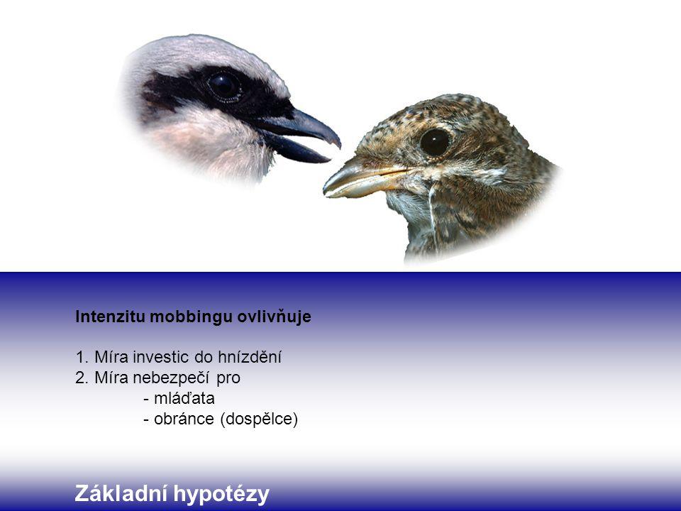 Základní hypotézy Intenzitu mobbingu ovlivňuje 1. Míra investic do hnízdění 2.