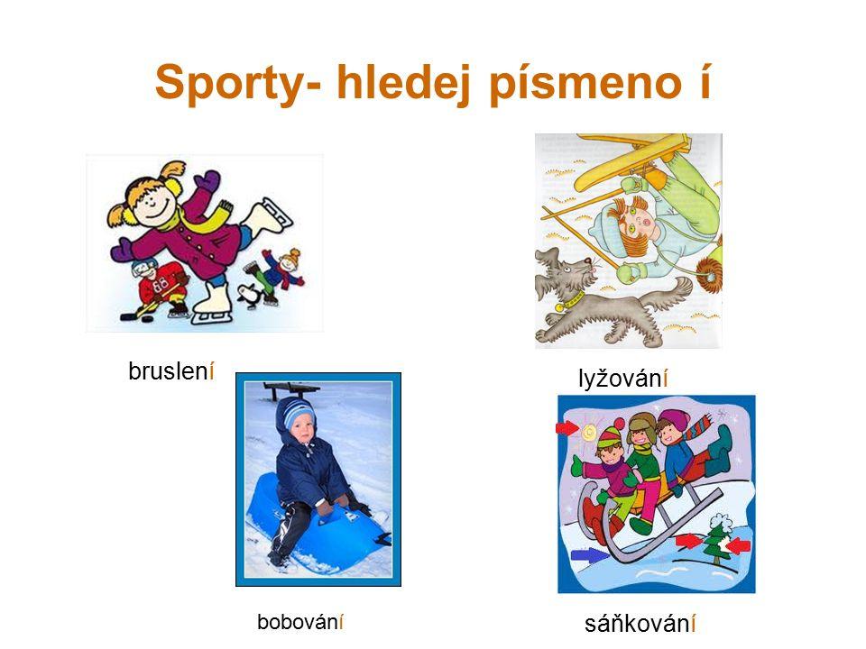 Sporty- hledej písmeno í bruslení lyžování bobování sáňkování
