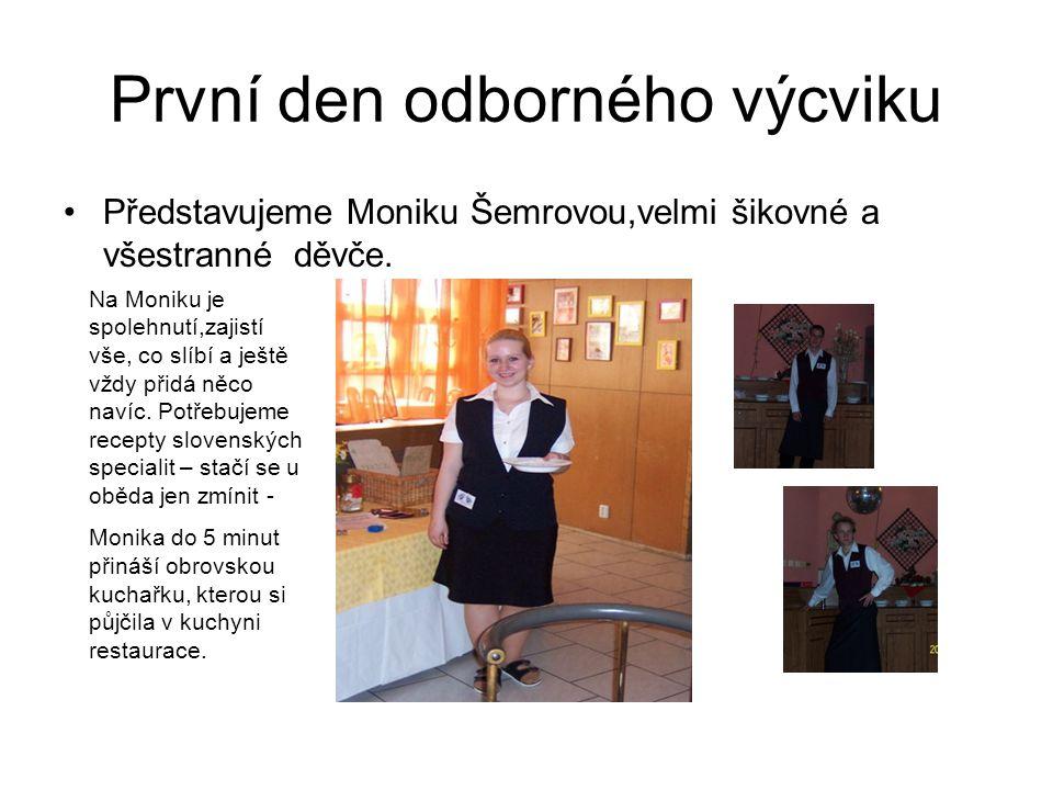 První den odborného výcviku Představujeme Moniku Šemrovou,velmi šikovné a všestranné děvče.