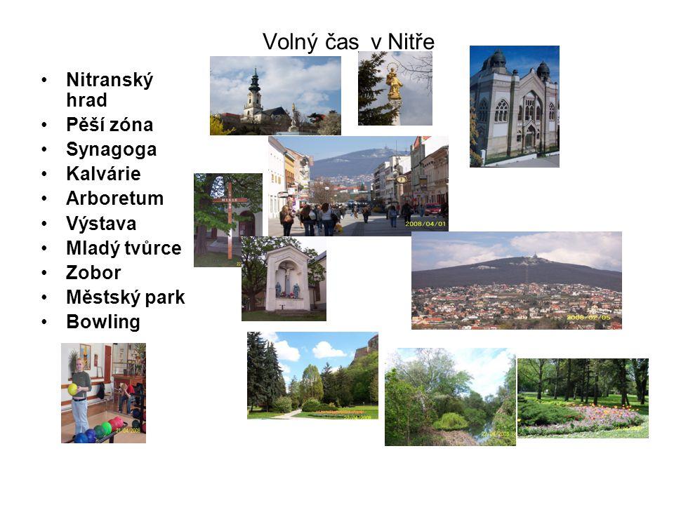 Nitranský hrad a jeho památky Studna zdobená bohatým kováním na nádvoří hradu. Co tam asi viděli?