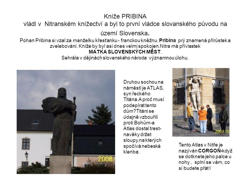 Kníže PRIBINA vládl v Nitranském knížectví a byl to první vládce slovanského původu na území Slovenska.