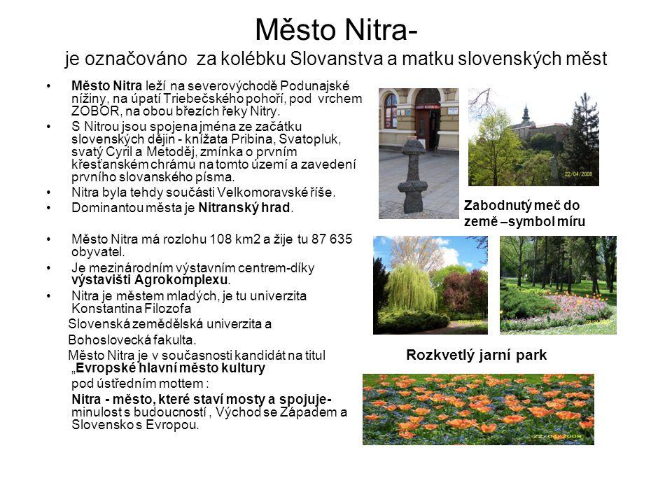 Město Nitra- je označováno za kolébku Slovanstva a matku slovenských měst Město Nitra leží na severovýchodě Podunajské nížiny, na úpatí Triebečského pohoří, pod vrchem ZOBOR, na obou březích řeky Nitry.