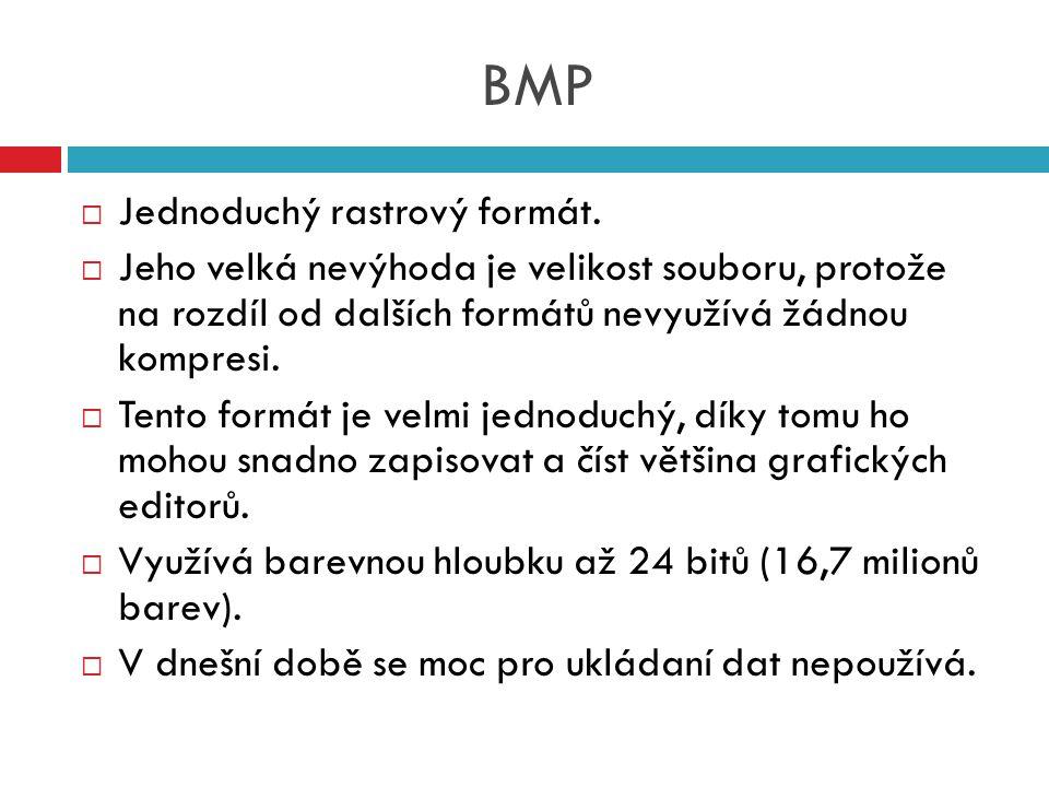 BMP  Jednoduchý rastrový formát.  Jeho velká nevýhoda je velikost souboru, protože na rozdíl od dalších formátů nevyužívá žádnou kompresi.  Tento f