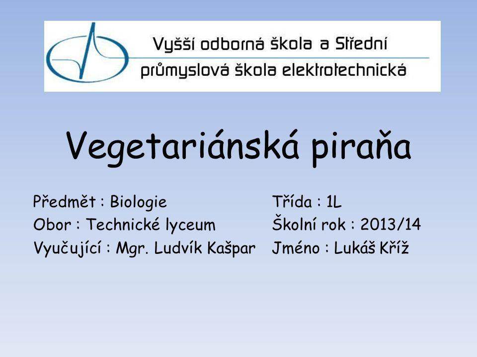 Vegetariánská piraňa Předmět : BiologieTřída : 1L Obor : Technické lyceumŠkolní rok : 2013/14 Vyučující : Mgr.