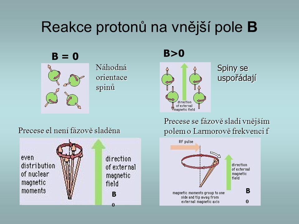 Reakce protonů na vnější pole B B = 0 B>0 Náhodnáorientacespinů Spiny se uspořádají Precese el není fázově sladěna Precese se fázově sladí vnějším pol