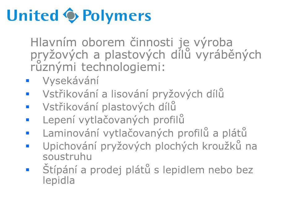 Hlavním oborem činnosti je výroba pryžových a plastových dílů vyráběných různými technologiemi:  Vysekávání  Vstřikování a lisování pryžových dílů 