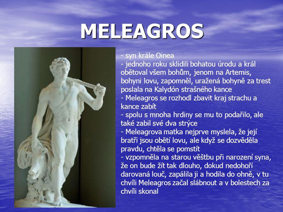MELEAGROS - syn krále Oinea - jednoho roku sklidili bohatou úrodu a král obětoval všem bohům, jenom na Artemis, bohyni lovu, zapomněl, uražená bohyně