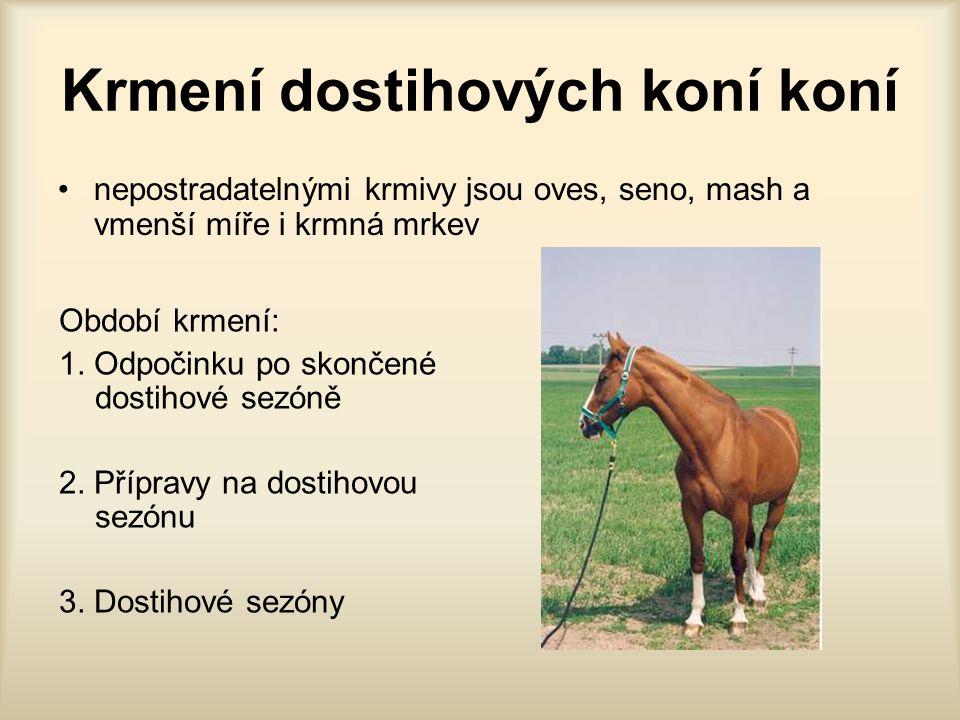 Krmení dostihových koní koní nepostradatelnými krmivy jsou oves, seno, mash a vmenší míře i krmná mrkev Období krmení: 1. Odpočinku po skončené dostih