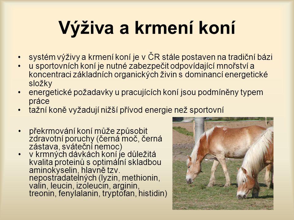 Příklady krmných dávek pro hříbata ve stáří 1,2 a 3 roky, v kg ObdobíKrmivo1 rok2 roky3 roky Zimní Luční seno567 Krmná mrkev nebo řepa 346 Zrniny454 Krmná sláma--2 Letní Čerstvá zelená píce 101825 Seno luční233 Zrniny332 Krmná sláma--2