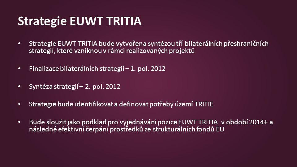 Strategie EUWT TRITIA Strategie EUWT TRITIA bude vytvořena syntézou tří bilaterálních přeshraničních strategií, které vzniknou v rámci realizovaných projektů Finalizace bilaterálních strategií – 1.