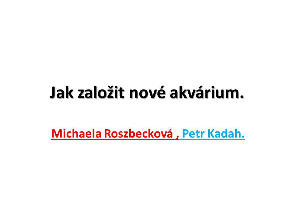 Jak založit nové akvárium. Michaela Roszbecková, Petr Kadah.