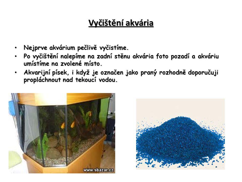 Vyčištění akvária Nejprve akvárium pečlivě vyčistíme. Nejprve akvárium pečlivě vyčistíme. Po vyčištění nalepíme na zadní stěnu akvária foto pozadí a a