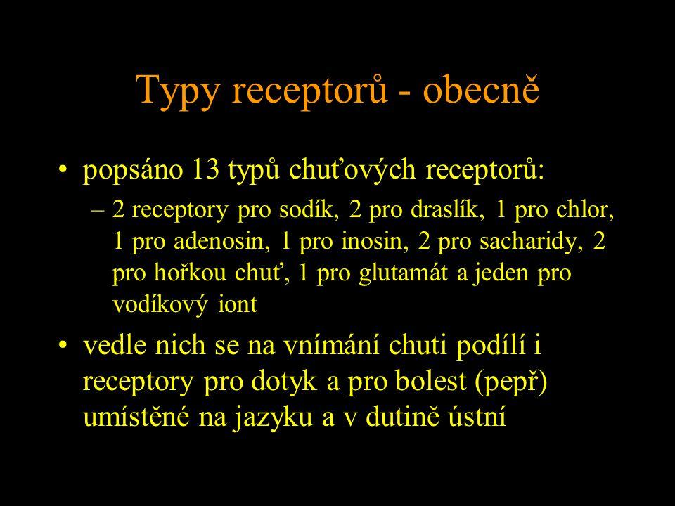 Typy receptorů - obecně popsáno 13 typů chuťových receptorů: –2 receptory pro sodík, 2 pro draslík, 1 pro chlor, 1 pro adenosin, 1 pro inosin, 2 pro sacharidy, 2 pro hořkou chuť, 1 pro glutamát a jeden pro vodíkový iont vedle nich se na vnímání chuti podílí i receptory pro dotyk a pro bolest (pepř) umístěné na jazyku a v dutině ústní