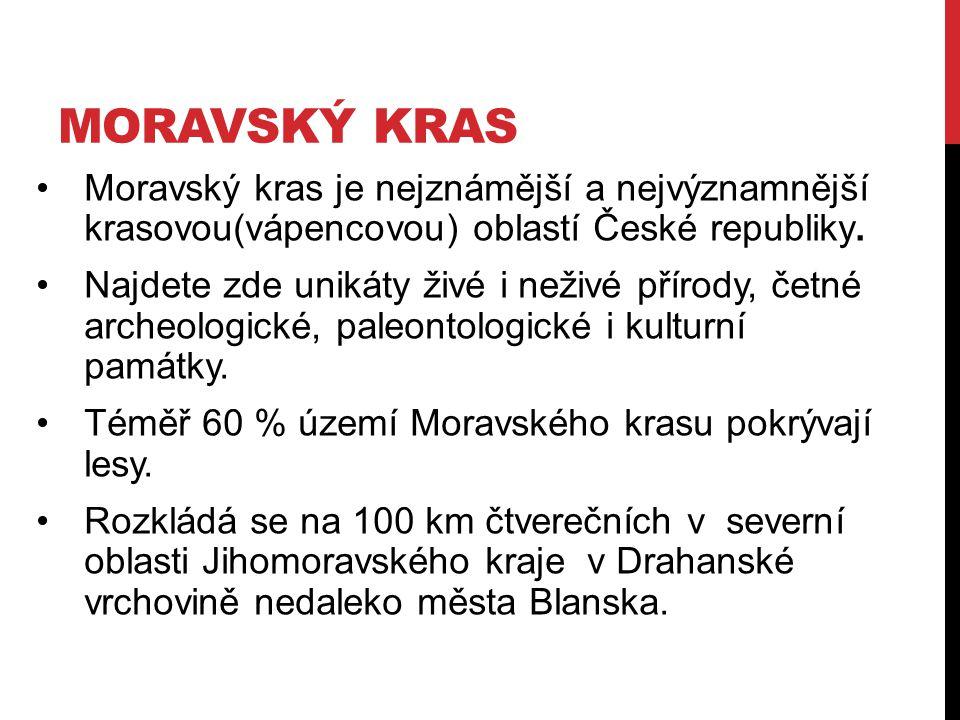 Moravský kras je nejznámější a nejvýznamnější krasovou(vápencovou) oblastí České republiky. Najdete zde unikáty živé i neživé přírody, četné archeolog